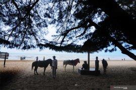 Pemkab Sumenep gandeng perbankan terbitkan Kartu Wisata Berlangganan