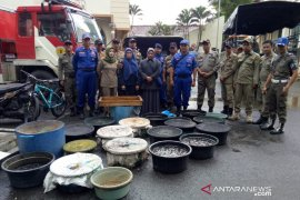 Tim gabungan kembali sita ribuan anakan ikan yang dijual di pasar Barabai