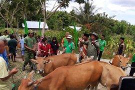 Bupati Gorontalo sebut Bongomeme berpotensi jadi pusat ternak sapi