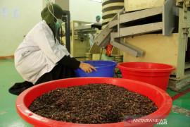 Pelatihan pengelolahan biji kakao menjadi cokelat Page 1 Small