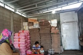 Kebutuhan bawang putih di Belitung mencapai 371 ton per tahun