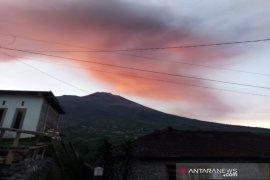 Warga tetap bertani usai erupsi Gunung Merapi
