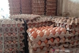 Harga gula pasir dan telur di Banda Aceh naik