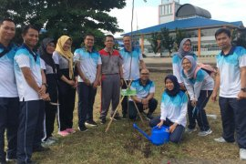 Generasi muda Jasa Raharja hijaukan Terminal Gambut Barakat