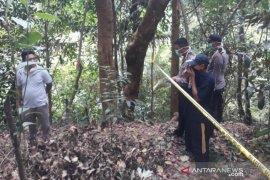 Warga temukan mayat yang sudah membusuk di kebun belakang Kantor Camat Mentok