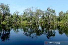 Tim aju kunjungan Raja Belanda alami kecelakaan di Sungai Sebangau