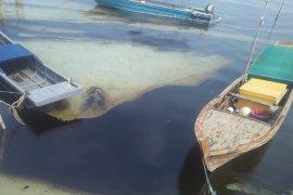 Minyak hitam kenyal kembali cemari Pantai Bintan