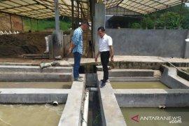 Peternakan ayam petelur di Cianjur terancam sanksi pidana dan tutup usaha