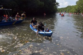 Kegiatan susur mangrove untuk konservasi