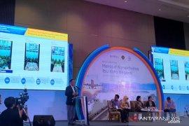 Luhut: 30 investor dalam dan luar negeri berminat ikut garap ibu kota baru