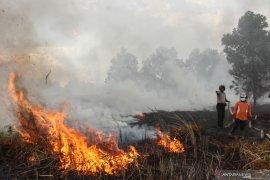 Tersangka karhutla Riau bertambah jadi 21 orang