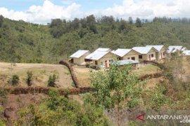 Distan  Kabupaten Jayawijaya dorong pemeliharaan babi secara modern
