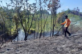 Kebakaran lahan kembali terjadi di Aceh Jaya