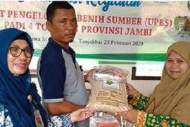"""BPTP Jambi kenalkan """"KATAM"""" kepada Petani Penangkar Padi"""