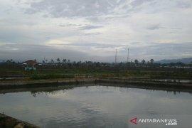 Balai Benih Rejang Lebong produksi jutaan benih ikan
