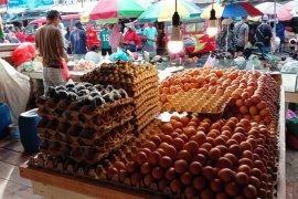 Harga telur ayam ras di pasar Ambon naik
