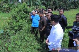 Video - Sekitar 100 hektar sawah terendam, Komisi II DPRD HSS turun ke lapangan