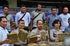 Polres Padangsidimpuan amankan 327 kg ganja tanpa pemilik