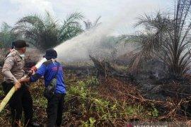 Dua hektare lahan gambut di Nagan Raya terbakar