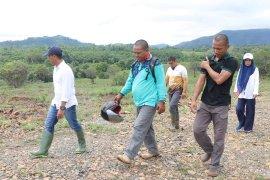 Dishut kembangkan Bukit Batu Aranio sebagai wisata alam