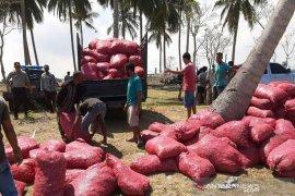 50 ton bawang merah seludupan digagalkan di Aceh Utara
