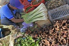 Permintaan tinggi, harga jahe dan temulawak di Madiun naik