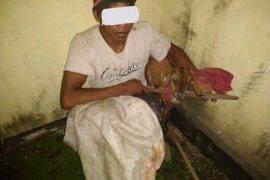 Curi kambing tiga pemuda di Aceh Utara diciduk polisi