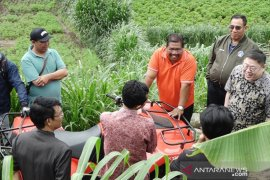 Undiksha-CQU-Pemkab Buleleng kembangkan potensi ternak sapi