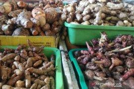 Harga jahe di Pasar Flamboyan capai Rp80.000/kg