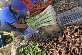 Penjualan jahe dan empon-empon di Ngawi terdongkrak wabah COVID-19