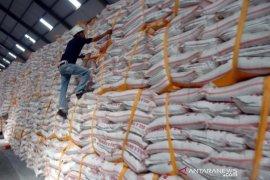 AGRI sarankan pemerintah permudah birokrasi impor gula mentah
