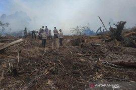 Lahan gambut kembali terbakar di perbatasan Aceh Jaya dan Aceh Barat