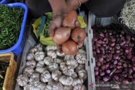 Bawang bombai naik dan langka di pasar Palembang Page 1 Small