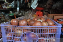 Bawang bombai naik dan langka di pasar Palembang Page 2 Small