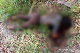 Seorang remaja ditemukan membusuk di perladangan