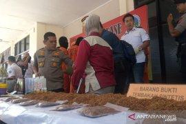 Polres Bogor sita 5,22 kg tembakau sintetis dari dua tersangka