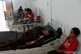 37 orang meninggal akibat DBD di NTT