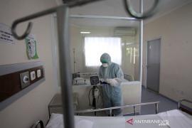 2 dari 19 pasien positif COVID-19 di RI telah sembuh