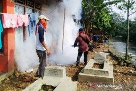Tercatat 210 kasus DBD terjadi di Kabupaten Bogor