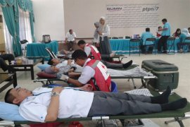 Donor Darah Mengawali Agenda HUT Ke-24 PTPN VII