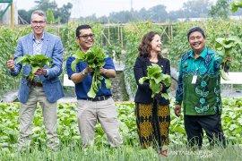 Kunjungan Wamen pertanian Belanda di Purwakarta