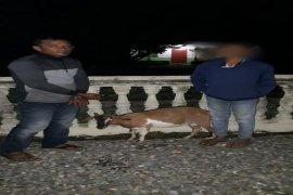 Curi kambing, Ayah dan anak kandungnya diamankan Polisi Bahorok Langkat