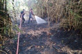 Satu hektare rumpun bambu hangus terbakar di Aceh Utara