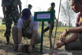 Pemprov Bangka Belitung tebar lima ton kepiting di hutan mangrove