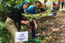 Coca-Cola Amatil Indonesia-Pemkab Badung tanam pohon di Desa Werdi Bhuwana