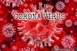 Kominfo catat ada 232 hoaks virus corona