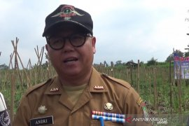 Pengusaha sembako di Sukabumi diimbau tidak layani pemborong pangan
