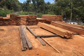 Polda Kalbar tetapkan pemilik ratusan batang kayu ilegal sebagai tersangka