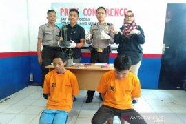 Polisi amankan buruh bangunan penanam ganja dalam polybag