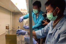 BKIPM Jambi ajari warga bikin cairan anti septik secara mandiri (video)